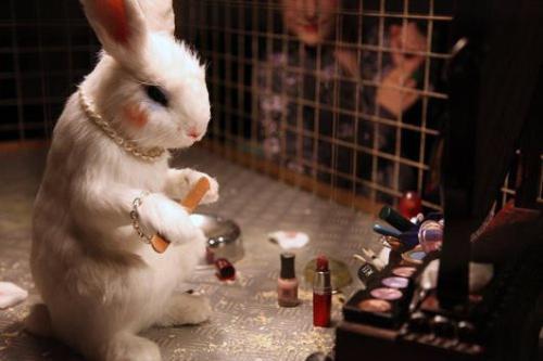 banksy_museum_cosmetics